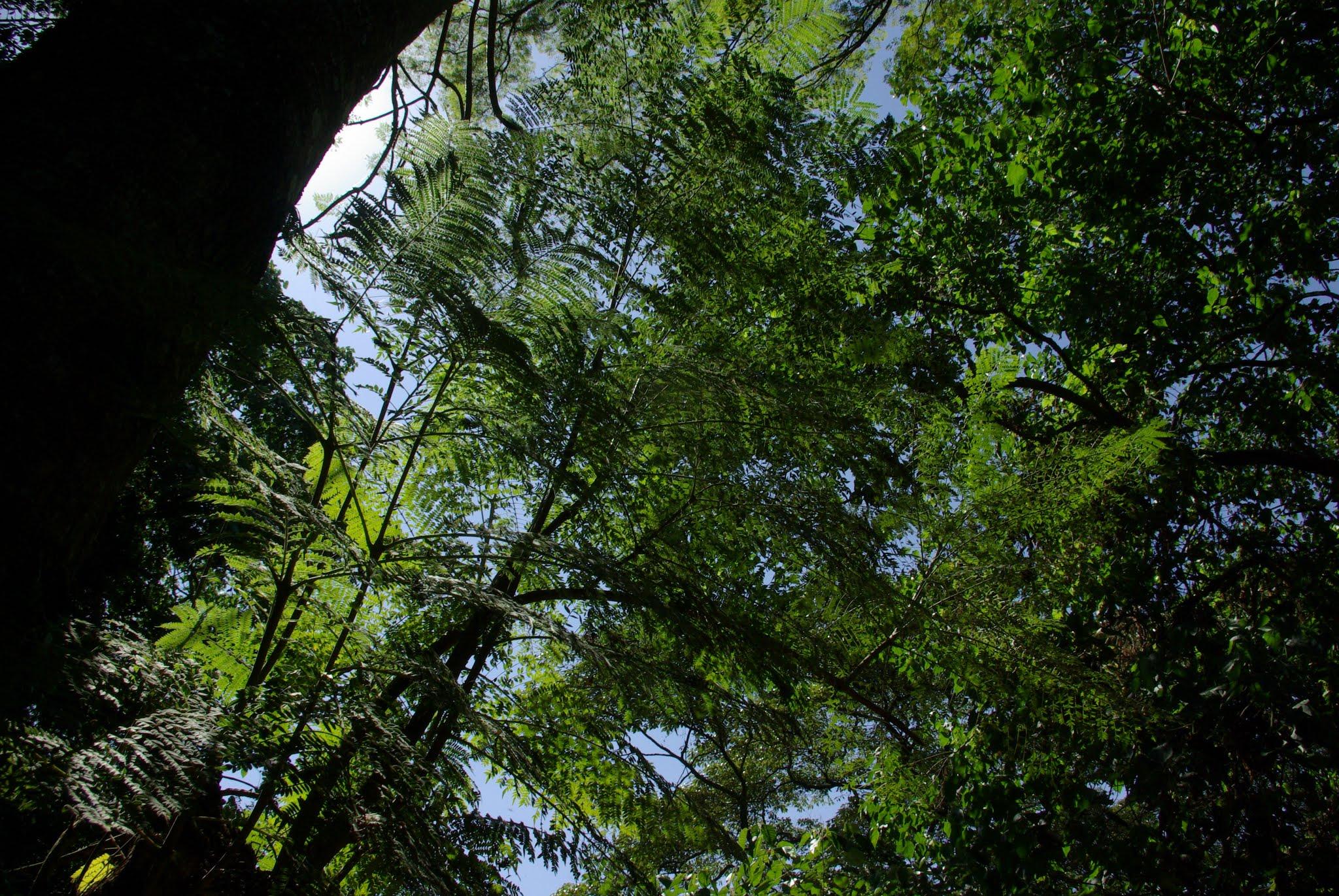 25-ngorongoro-06-08