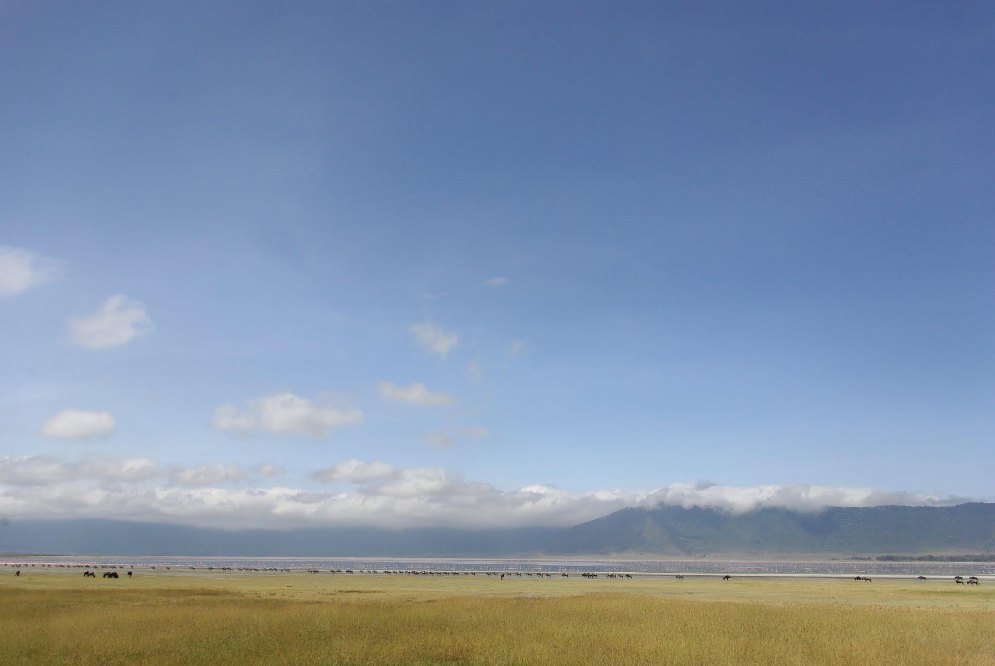 8-ngorongoro-06-08_dxo